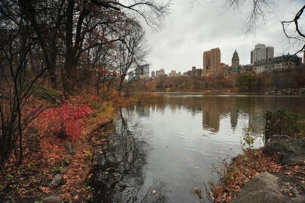 Foto no Central Park em Manhattan, Nova Iorque.