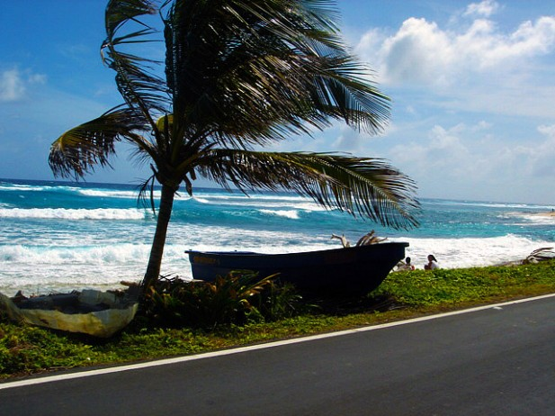 Foto de palmeira, barcos e mar em San Andrés.