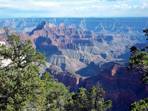 Foto panorâmica do Grand Canyon Norte com árvores.