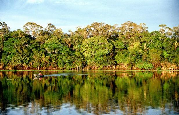 Foto de vegetação, rio e barco na Amazónia, Brasil.