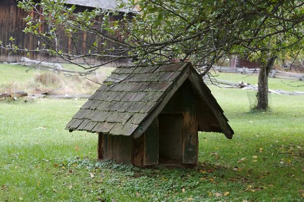 Foto de uma casota de cão em madeira.