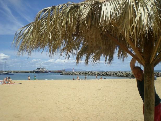 Foto de praia, mar e palmeira em Machico, Madeira.