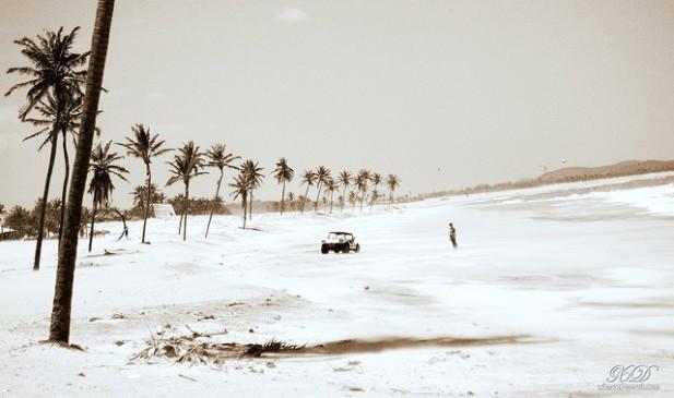 Foto de praia de Cumbuco em Fortaleza, Brasil, com palmeiras, um buggy e mar.