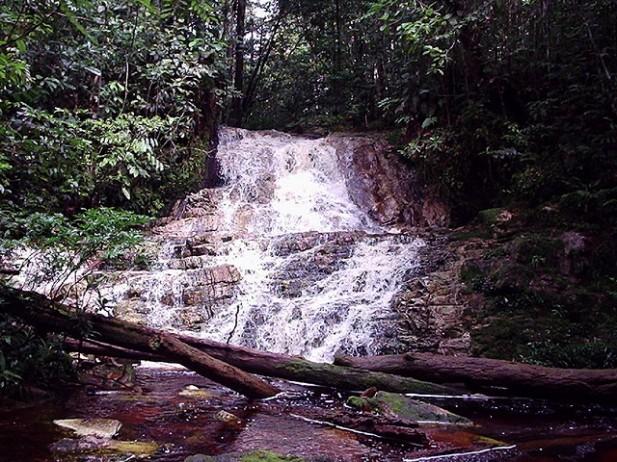 Foto de água a correr em São Gabriel da Cachoeira, Amazónia, Brasil.
