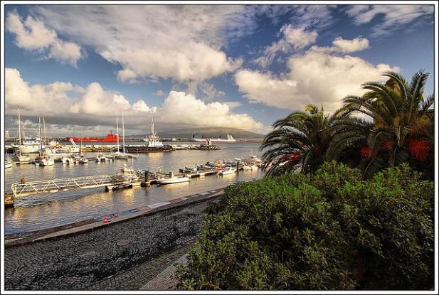 Foto de árvores, mar e barcos.