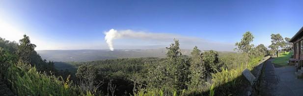 Foto de vegetação e vulcão ao fundo.