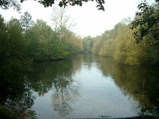 Foto de rio e floresta na Holanda.