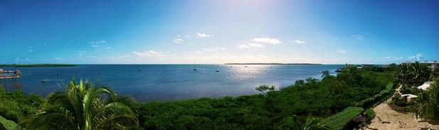 Foto de mar e vegetação.