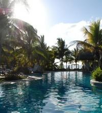 Foto de piscina com plantas e mar ao fundo.