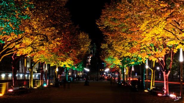 Avenida Unter den Linden