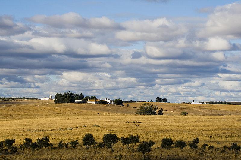 Paisagem no Alentejo (foto: Digitalsignal / wikimedia)