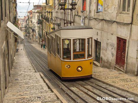 portugal--lisboa--50367