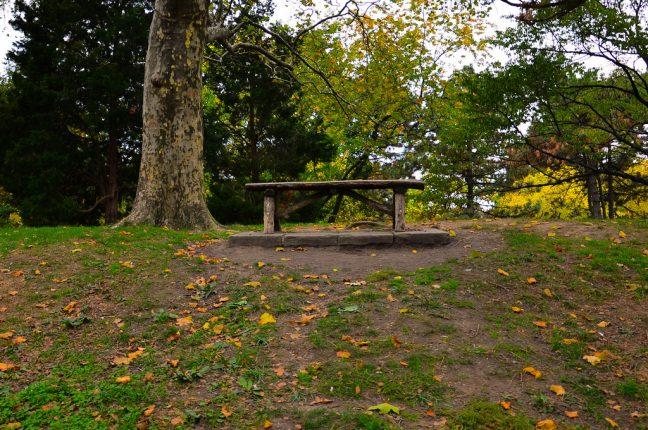 """O Central Park pode ser um refúgio tranquilo no coração da """"Grande Maçã"""""""