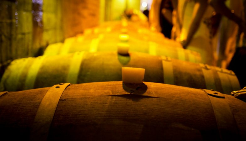Pipas de vinho na Herdade do Esporão